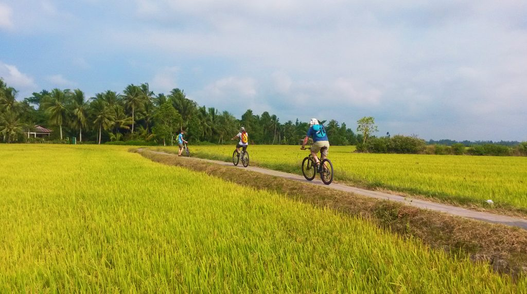 3 Day Mekong Delta Cycling Tour with Homestay