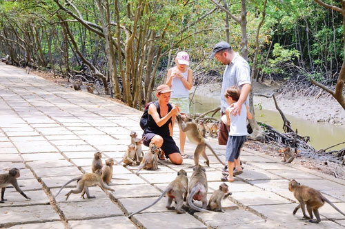 things to do in Saigon in 3 days monkey island