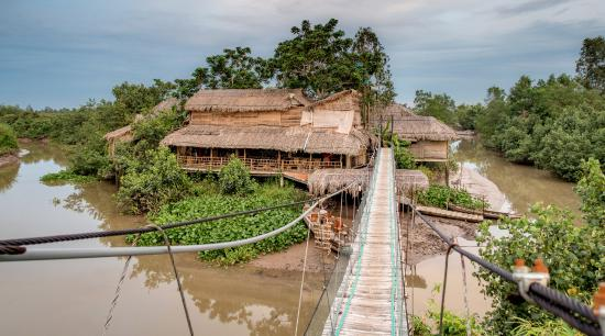 How to travel to Mekong Delta during Tet Nguyen Shack Homestay