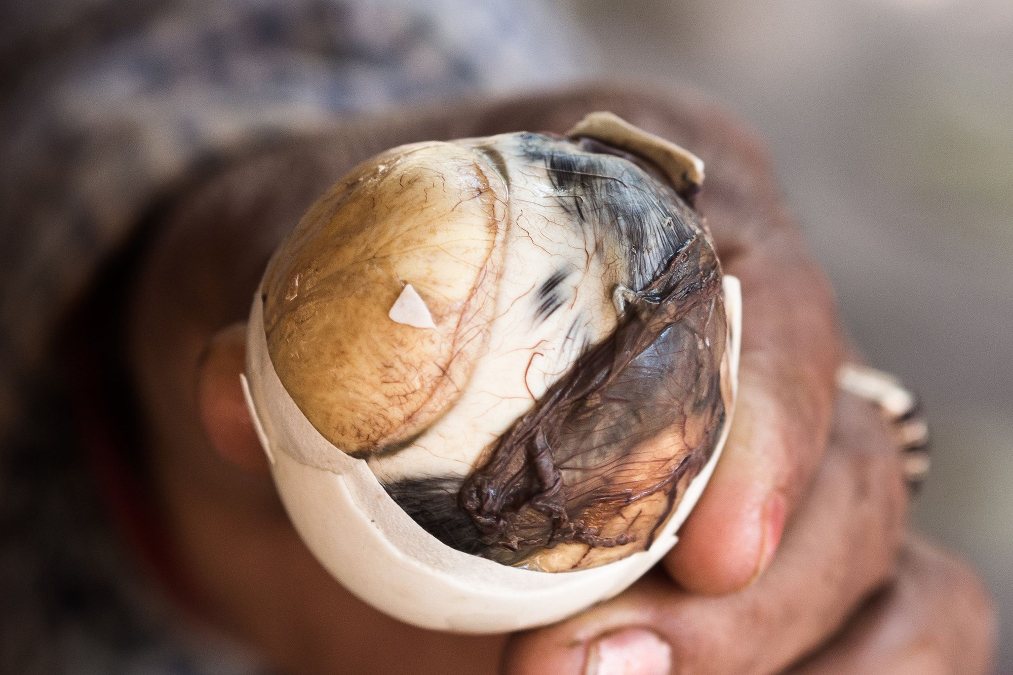 balut- saigon city tour