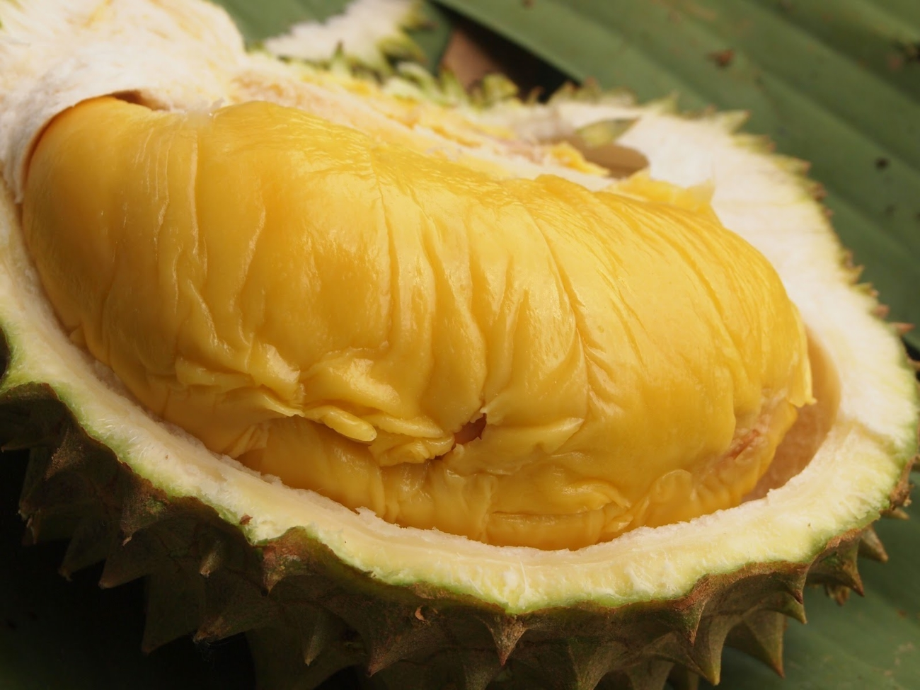 Exotic Food that foreigners are afraid of- Sai Gon City Tour you must try