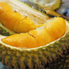 Visit Vietnam and Try the Worlds Smelliest Fruit: DURIAN