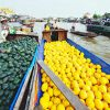 Floating market and Mekong delta